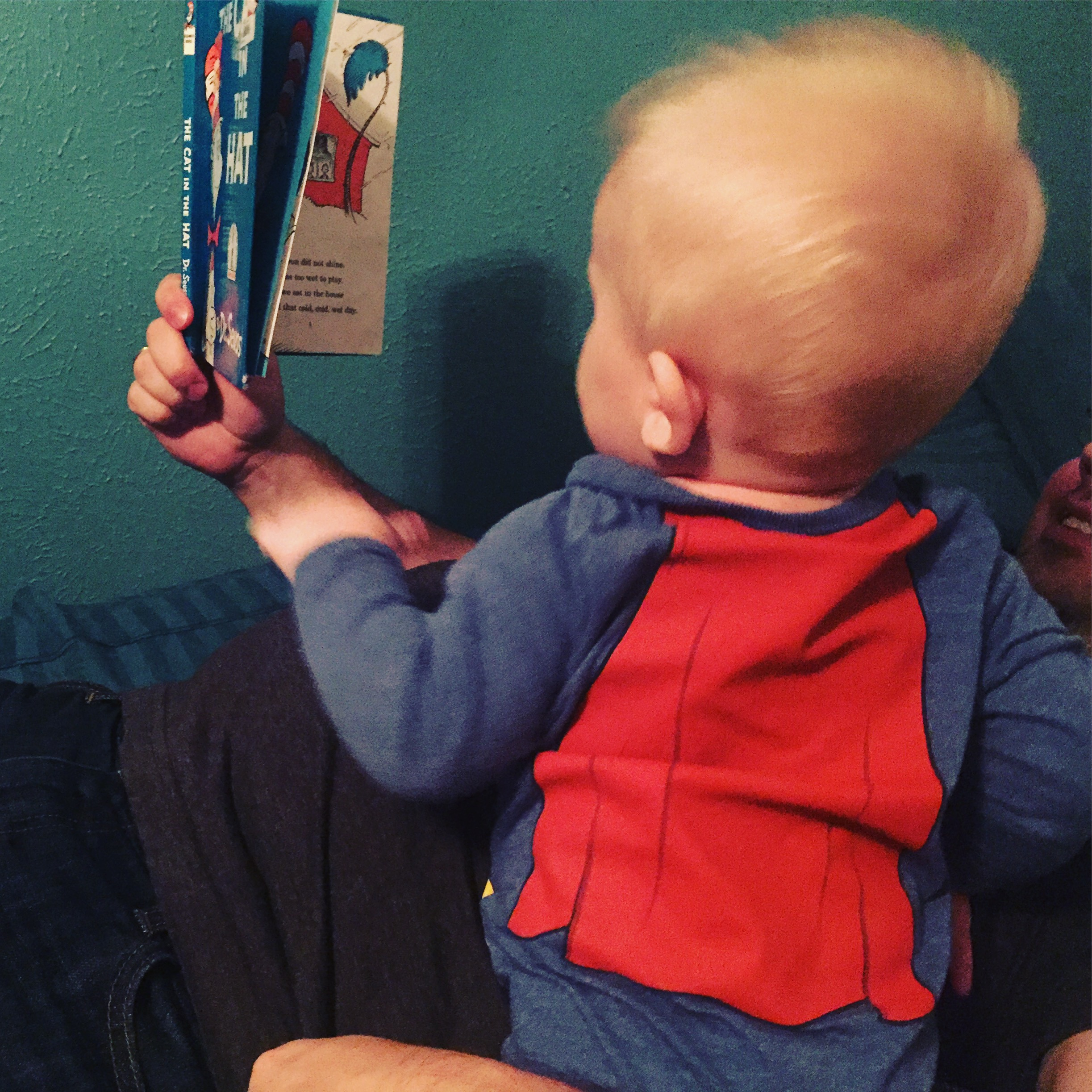 Last-Minute Gift Guide: Toddler Books