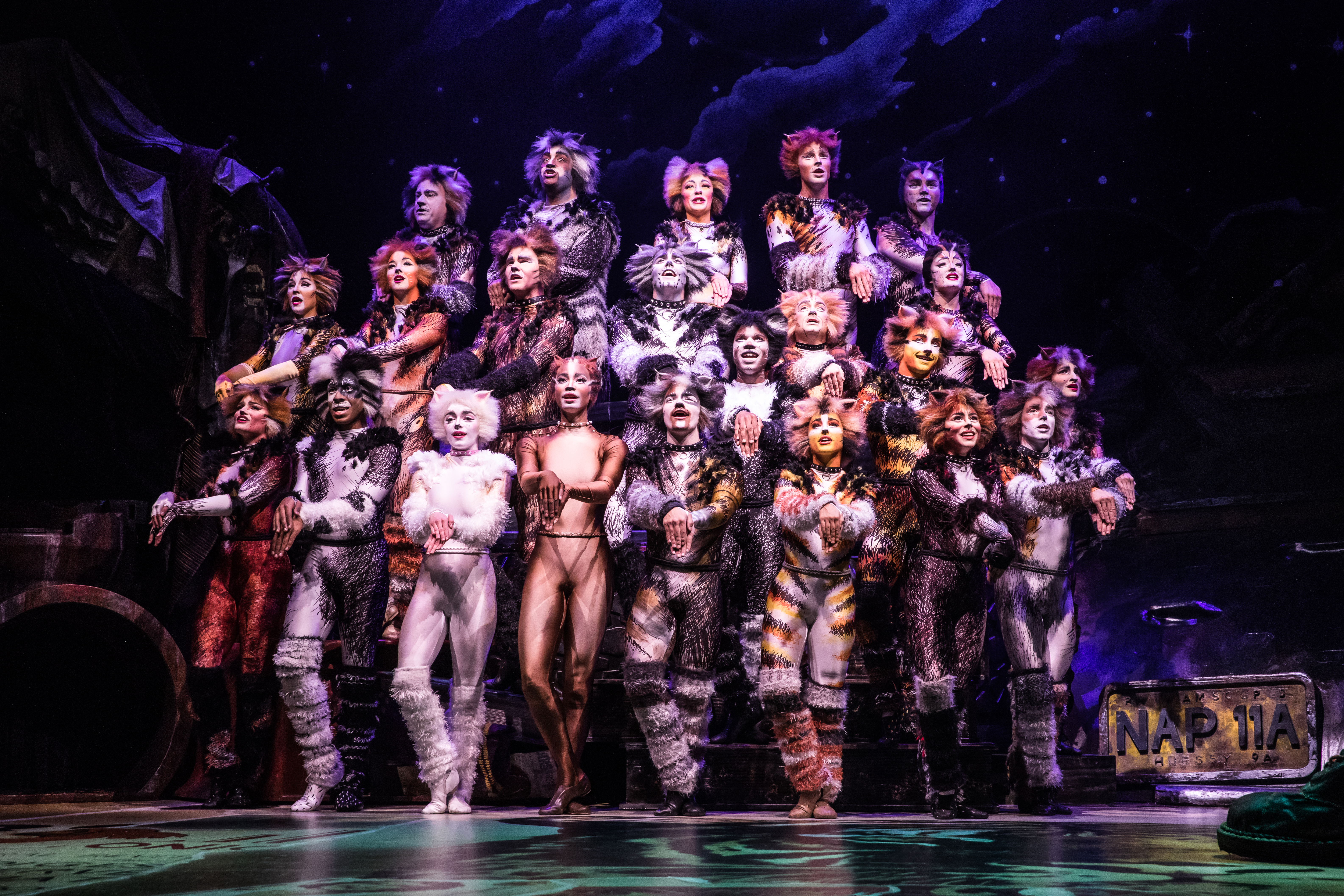 The North American Tour Company of CATS. Photo by Matthew Murphy 2019